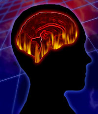 Brain Function - Energy Medicine
